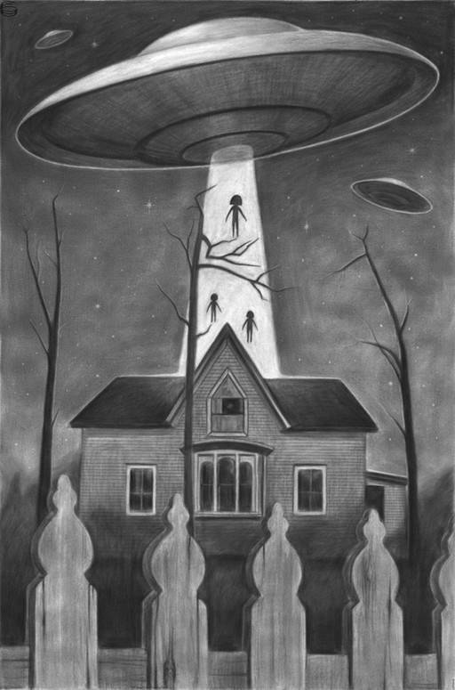 Home Abduction